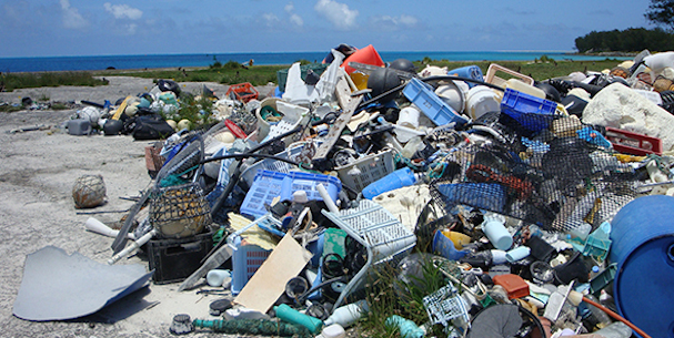 Plastic Paradise 607