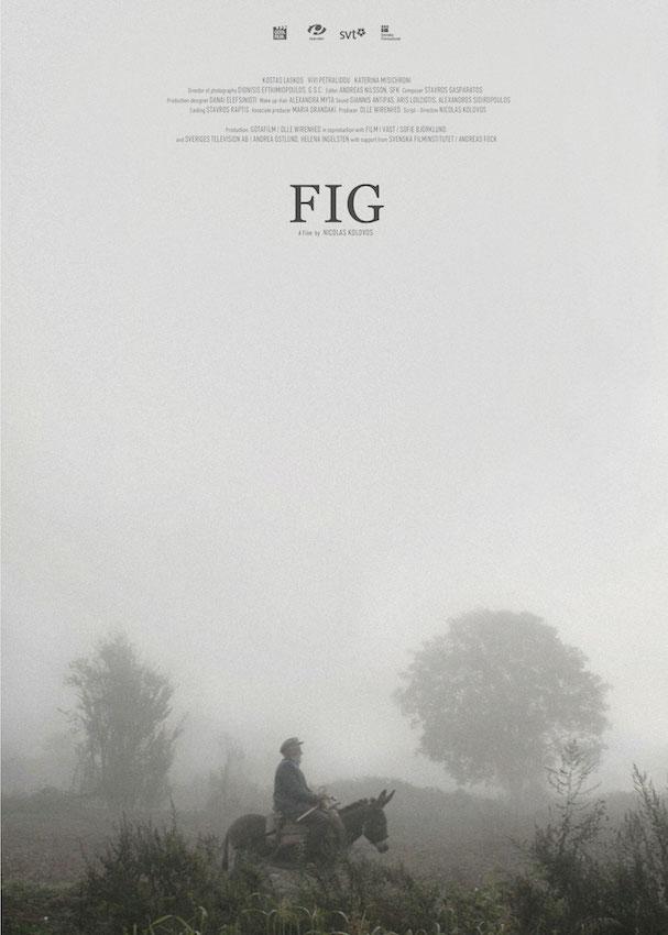 fig σύκο 607