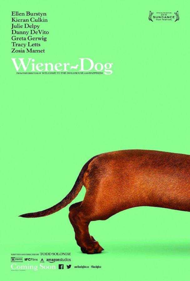 Wiener Dog Poster 607