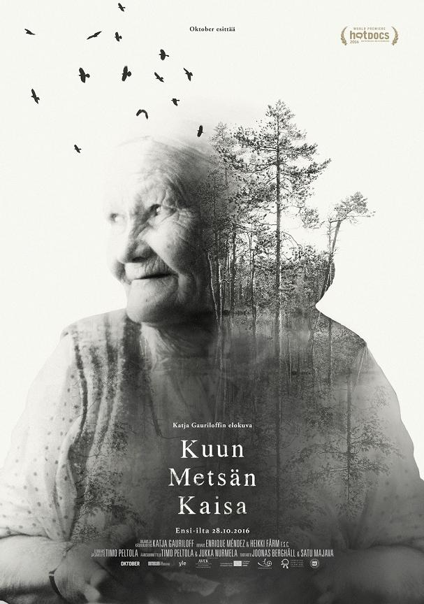 Kaisa's Enchanted Forest Poster