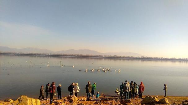 Μέρες της Λίμνης 607
