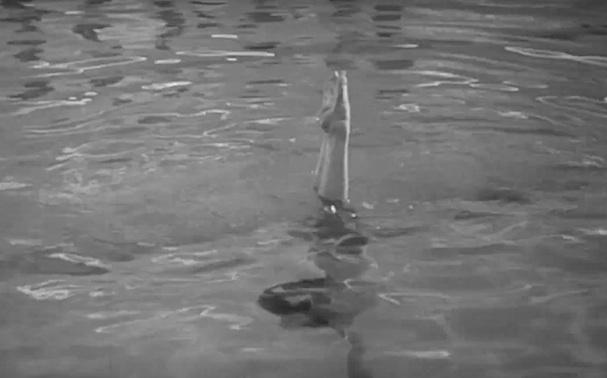Alphaville Pool Scene