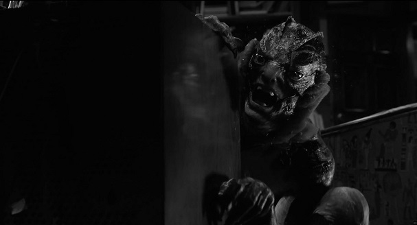 The Shape of Water black and white 607
