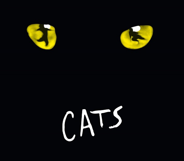 Cats 607