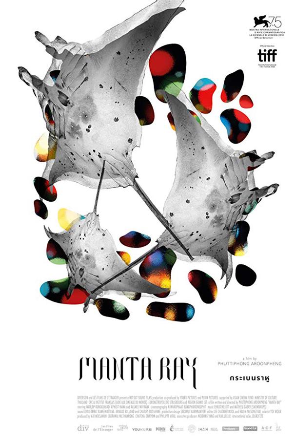 manta ray poster 607