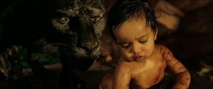 Mowgli 424
