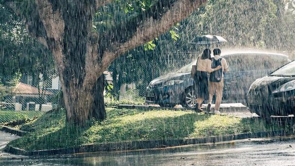 wet season 607