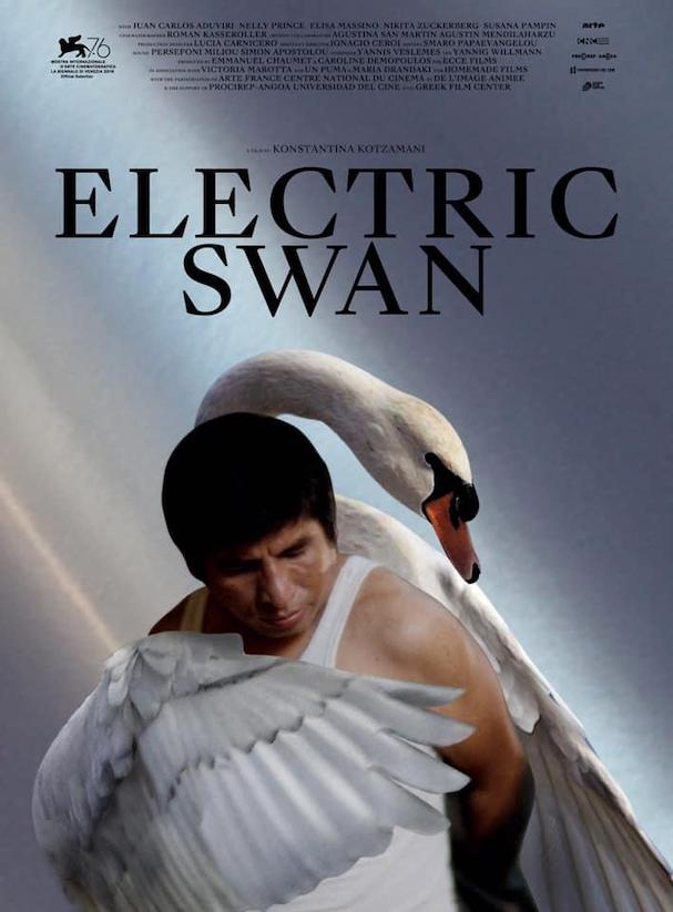 Electric Swan Poster 607