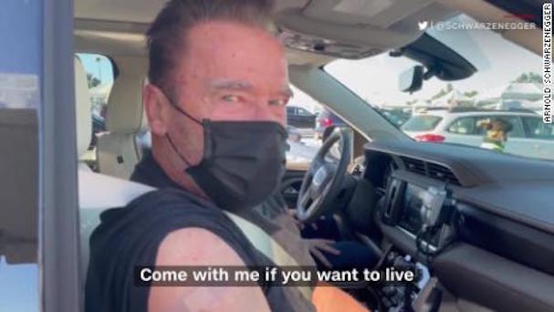 Arnold 607