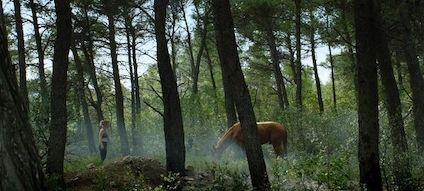 αλογα 424