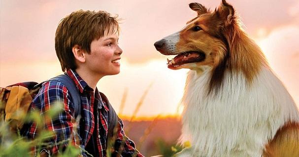 lassie come home 607