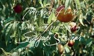 Ενα υπέροχο κλιπ για το «Mystery of Love» του Σουφγιάν Στίβενς, από το «Να Με Φωνάζεις με τ' Ονομά Σου»