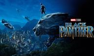 Το «Black Panther» ήταν το… μανιφέστο της χρονιάς