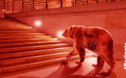 Berlinale 2016: Ολο το Διαγωνιστικό σ' ένα κείμενο