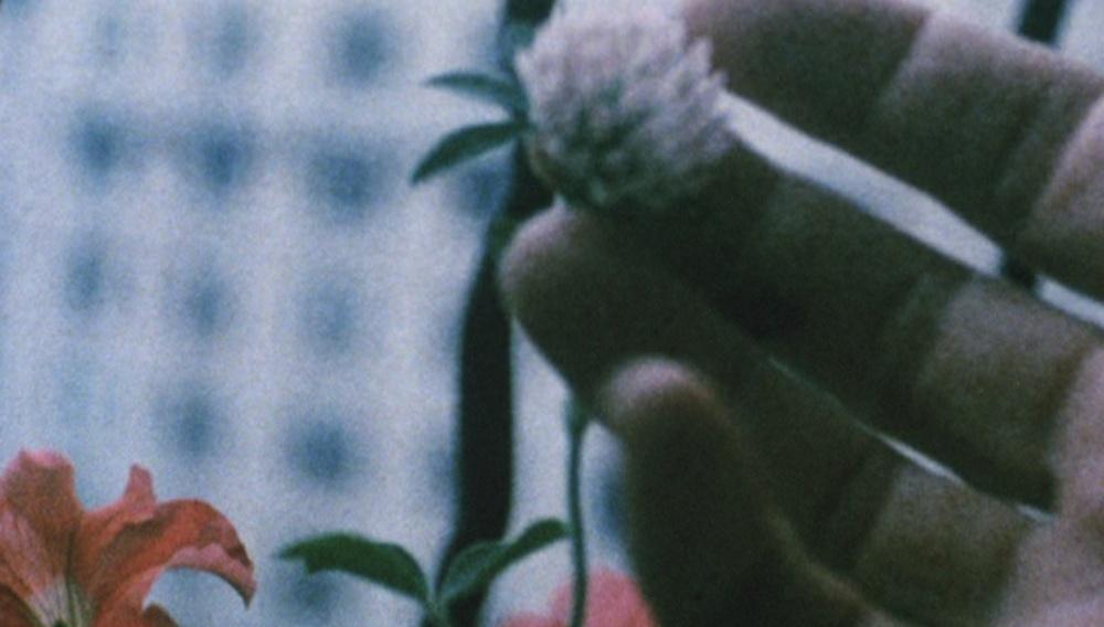 Οι Ταινίες της Κυριακής: «Walden» του Γιόνας Μέκας (1968)