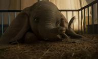 Welcome to the circus: Νέο τρέιλερ για το «Dumbo» του Τιμ Μπάρτον