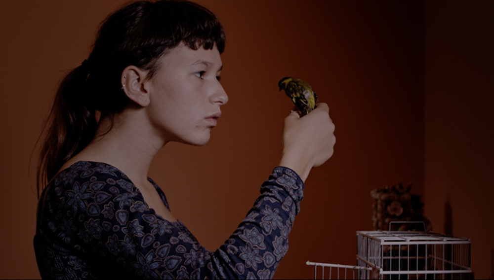 Berlinale 2017: Στο «Colo» η κρίση ανίας έρχεται πριν την κρίση της Πορτογαλίας