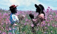 Ο Στίβεν Σπίλμπεργκ διασκευάζει σε μιούζικαλ το «Πορφυρό Χρώμα»