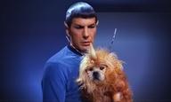 Καμία ελπίδα για τον κόσμο χωρίς τον Λέοναρντ - Μr. Spock - Νιμόι στη ζωή!