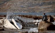 Η Ρωσία της διαφθοράς και της υποκρισίας είναι έτοιμη για το κοντινό της στο «Leviathan»