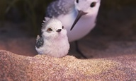 «Piper»: Δείτε την μικρού μήκους  κινουμένων σχεδίων της Pixar που κέρδισε το Οσκαρ