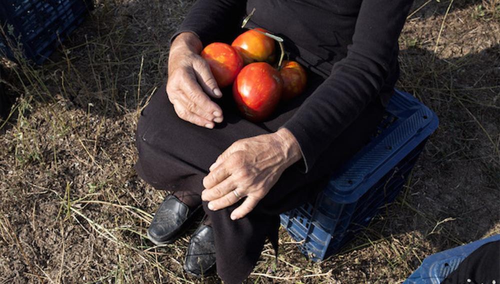 Οταν ο Βάγκνερ Συνάντησε τις Ντομάτες