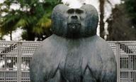 20ό ΦΝΘ: Το «Tarzan's Testicles» δεν έχει τον Θεό του! (με την καλή έννοια)