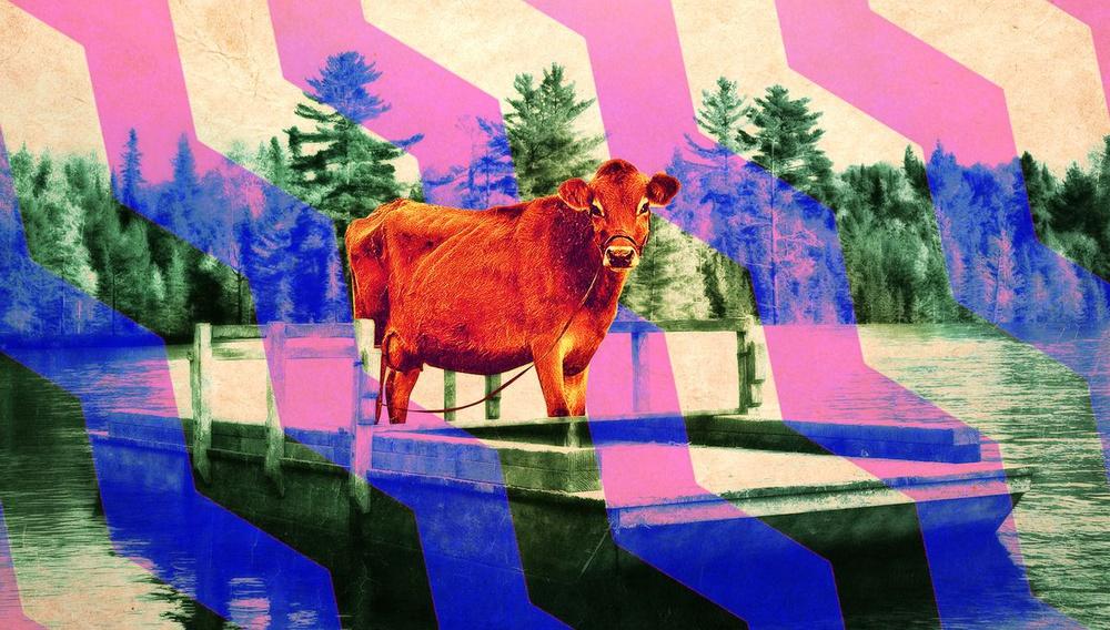 Το λεξικό του «First Cow» (σύμφωνα με την Κέλι Ράιχαρντ)