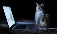 Πώς να δείτε ταινίες μαζί με τους φίλους σας - όταν ο καθένας είναι σπίτι του
