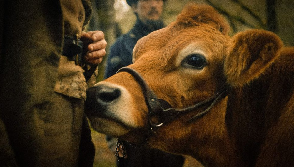 Berlinale 2020: Το «First Cow» της Κέλι Ράιχαρντ μιλάει για τα χέρια που άρμεξαν το αμερικανικό όνειρο