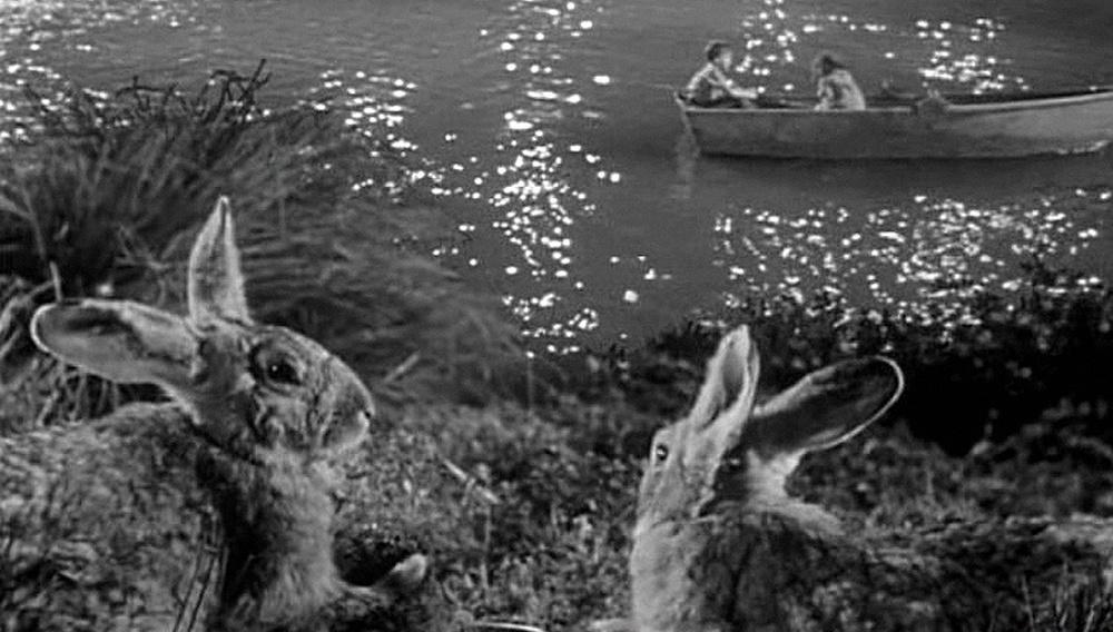 Από τη «Νύχτα του Κυνηγού», στο «Xenia» του Πάνου Χ. Κούτρα, ένα ποτάμι δρόμος