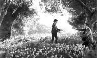 Οι Ταινίες της Κυριακής: «How Green Was My Valley» του Τζον Φορντ (1941)