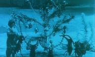 Χριστούγεννα, μικρού μήκους: The Insects' Christmas