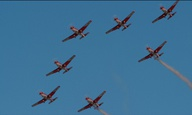 Τα «Πουλιά» του Μπάμπη Μακρίδη στο Φεστιβάλ του Ρότερνταμ - Δείτε, αποκλειστικά εδώ, το trailer