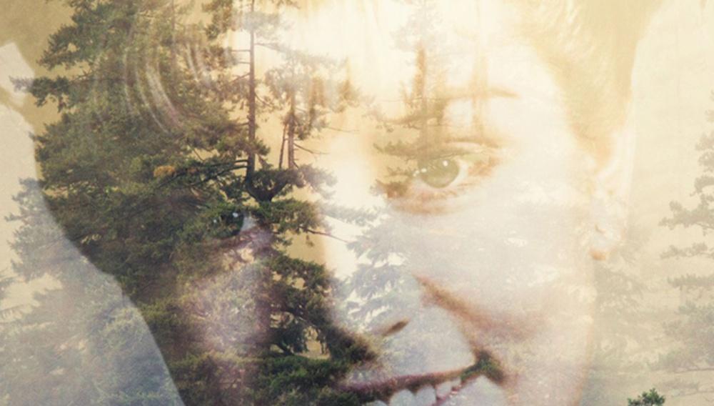 Ολόκληρο το «Twin Peaks» σε τρία λεπτά - ή οκτώ κείμενα