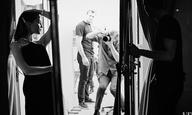 H Αλίσια Βικάντερ φωτογραφίζεται για το Vanity Fair και καλεί Σουηδία