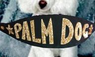 Κάννες 2013: Και το Palm Dog πηγαίνει...