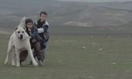 Βενετία 2014: Ενα αγόρι κι ο σκύλος του στο «Sivas» του Καάν Μουτζετζί