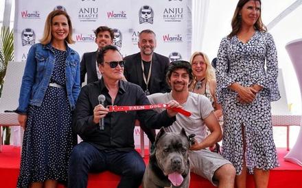 Κάννες 2019: Το «Palm Dog» για τον καλύτερο σκύλο του Φεστιβάλ στον Κουέντιν Ταραντίνο