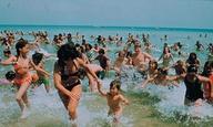 Καλοκαιρινές σκηνές για πάντα #28 / «Jaws» του Στίβεν Σπίλμπεργκ