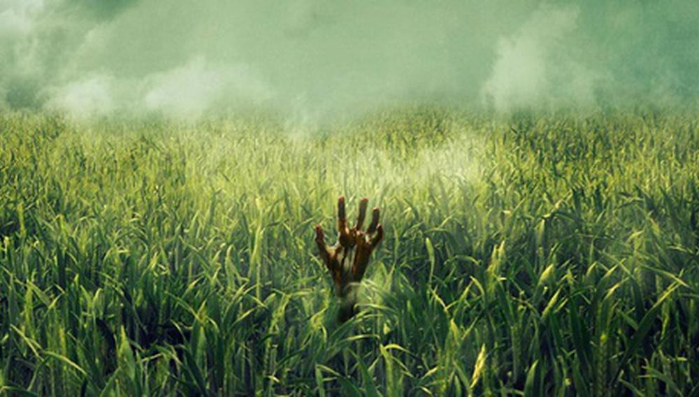 To «In the Tall Grass» του Στίβεν Κινγκ έρχεται στο Netflix