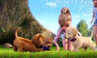 Η Barbie & Οι Αδελφούλες Της Σε Μία Απίθανη Κουταβοπεριπέτεια