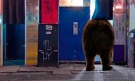 17 ταινίες για μια Χρυσή Αρκτο: Αυτό είναι το Διαγωνιστικό Πρόγραμμα της Berlinale 2017