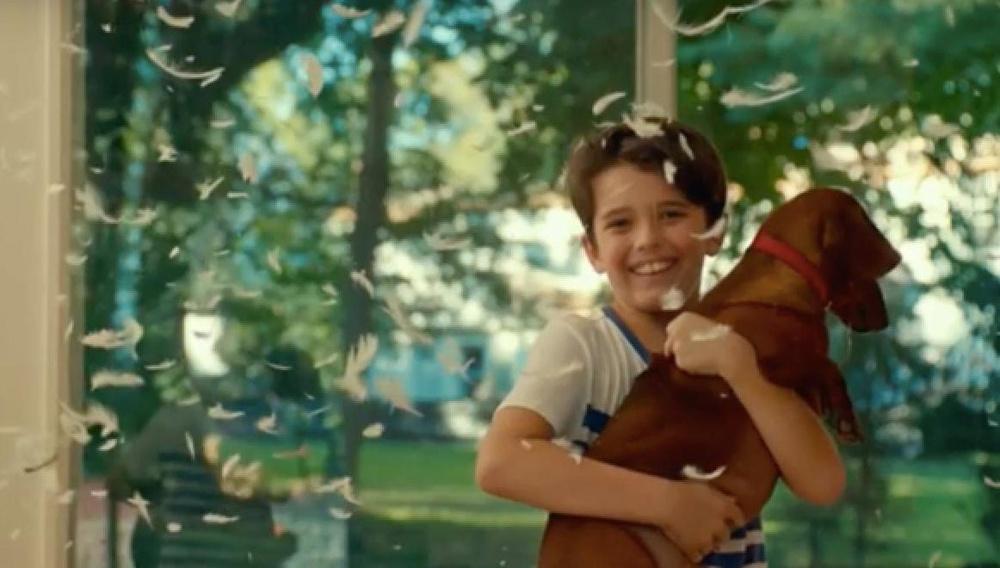 Τέσσερις άνθρωποι, ένας σκύλος-λουκάνικο και η πικρή κωμωδία του «Wiener Dog» του Τοντ Σόλονζ