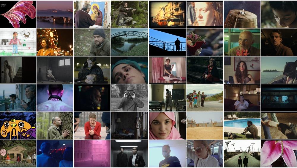 Οι Νύχτες Πρεμιέρας ανακοινώνουν το Διαγωνιστικό ελληνικών ταινιών Μικρού Μήκους