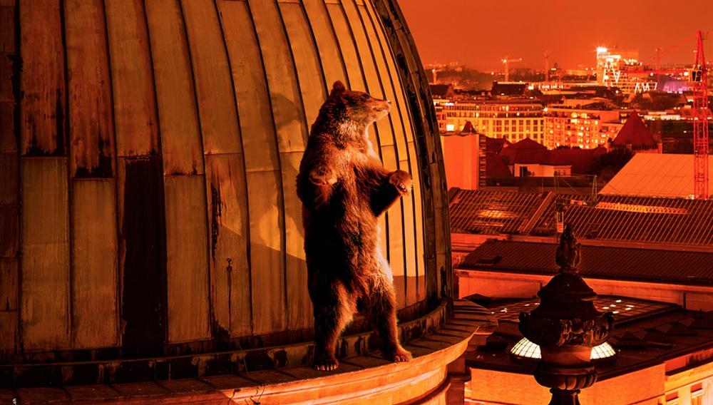Berlinale 2018: Οι αρκούδες βγήκαν πάλι στο Βερολίνο!